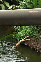 A young boy dives into a creek that runs under an oil pipeline outside of Lago Agrio, in northern Ecuador, on Monday, October 20, 2003. Residents of Lago Agrio and neighboring towns claim that the U.S. oil company Texaco is responsible for contaminating the region during their years of operation of the oil fields. They are arguing in court that the contamination caused environmental damage and numerous cases of cancer and other illnesses throughout the area. Many rural residents use the creeks and rivers that run next to the pipelines and oil wells for bathing and washing clothes. (Photo/Scott Dalton)