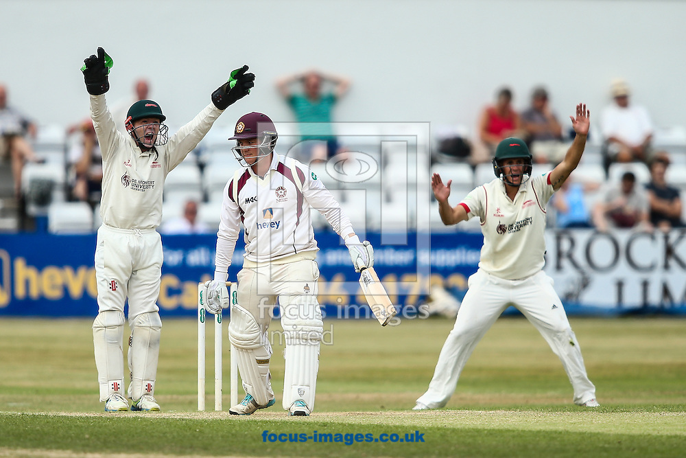Rob Newton of Northamptonshire CCC (centre) survives a Leicestershire appeal during the Specsavers County C'ship Div Two match at the County Ground, Northampton<br /> Picture by Andy Kearns/Focus Images Ltd 0781 864 4264<br /> 14/08/2016