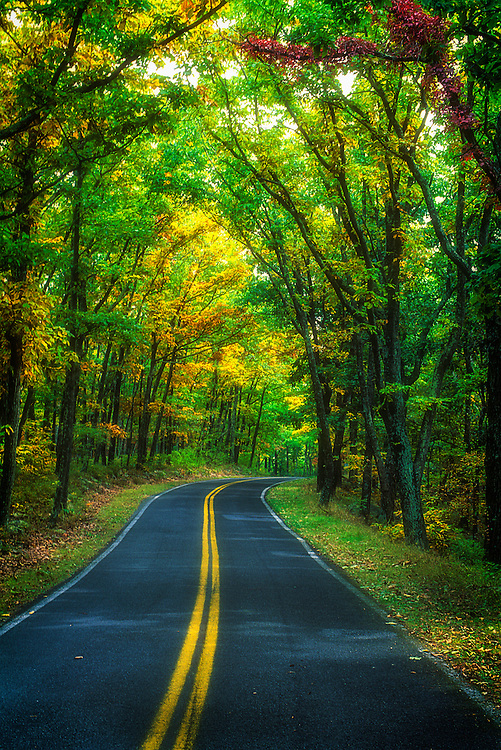 Two laned road in autumn warm