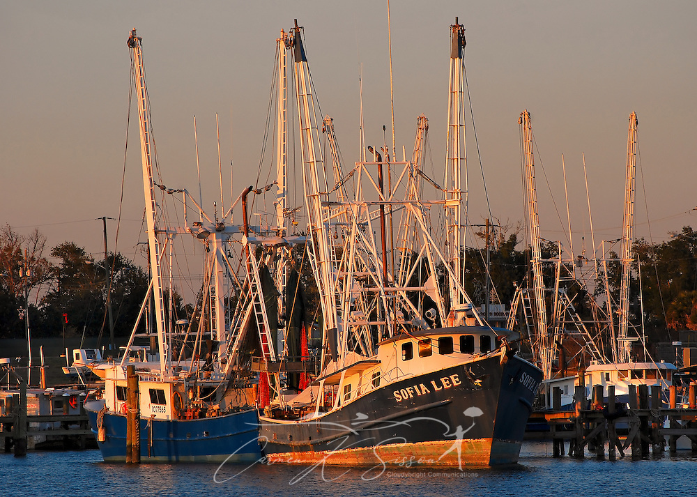 Shrimp boats dock at the Pass Christian Yacht Club in Pass Christian, Mississippi Dec. 8, 2010. The Gulf Coast continues to recover from this summer's Deepwater Horizon BP oil spill, which affected nearly 29,000 square miles of shoreline from Louisiana to Florida. (Photo by Carmen K. Sisson/Cloudybright)