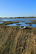 Winter landscape with small beached boat, River Deben, Ramsholt, Suffolk, England, UK