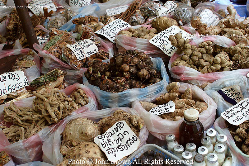 A sidewalk stall stocked with roots and organic medicinal herbs is part of he urban landscape in Vientiane, Laos. Since basic medical supplies and pharmaceutical remedies such aspirin are scarce in Laos, residents rely on home grown items such as tree bark to treat what ails them.