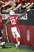 Arizona Cardinals wide receiver John Brown (12) high fives fans after catching a first quarter touchdown pass that gives the Cardinals a 6-0 lead during the 2015 NFL preseason football game against the San Diego Chargers on Saturday, Aug. 22, 2015 in Glendale, Ariz. The Chargers won the game 22-19. (©Paul Anthony Spinelli)