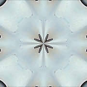 Monochromatic digital abstract kaleidoscope of shapes and greys.