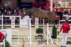 099, Nelson van het Vinckenhof Z<br /> BWP Hengstenkeuring -  Lier 2020<br /> © Hippo Foto - Dirk Caremans<br />  17/01/2020