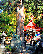 Nakano Momijiyama shrine on the side of a mountain in Kuroishi northern Japan.People praying at this ancient shinto shrine in autumn.
