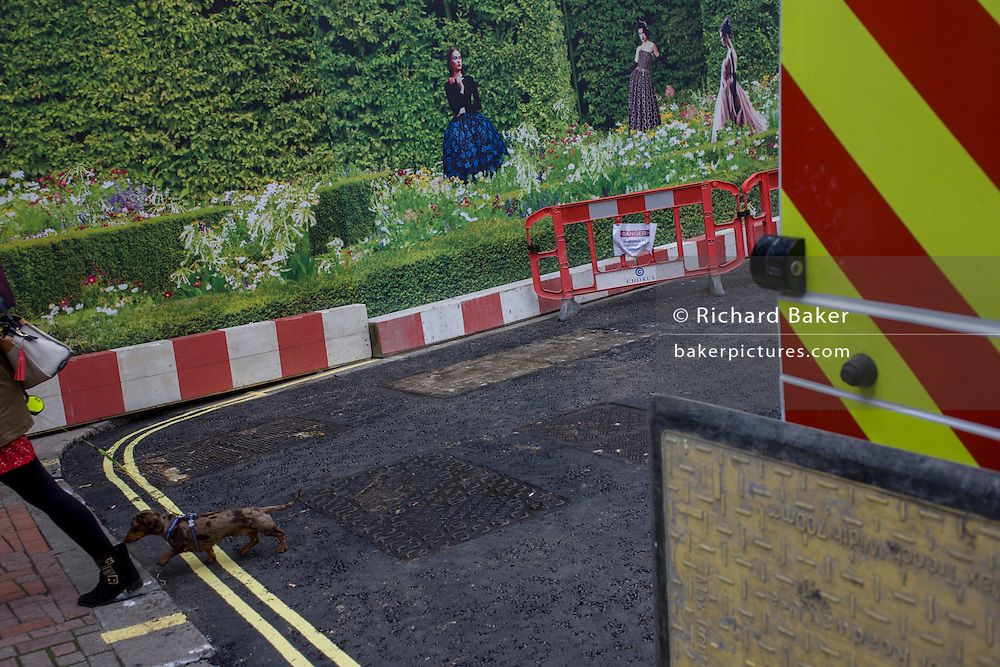A pet dachshund dog walks past the construction hoarding for a forthcoming Dior store in London's Bond Street.