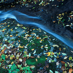 Fall in Vermont's Green Mountains.  Fallen leaves decorate the rocks and moss next to a tributary of Wardsboro Brook and the West River.