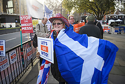 © Licensed to London News Pictures. 29/01/2019. London, UK. Brexit campaigners gather outside the Houses of Parliament in Westminster, London. MPs will today (Tues) vote on a series of amendments to the Prime Minister's plans that could shape the future direction of Brexit. . Photo credit: Ben Cawthra/LNP