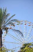 Amusement Park - Ferris wheel