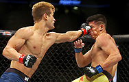 Nov 11, 2017; Virginia, VA, USA; Sage Northcutt (red gloves) fights Michel Quinones (blue gloves) during UFC Fight Night at the Ted Constant Convocation Center. Mandatory Credit: Peter Casey-USA TODAY Sports
