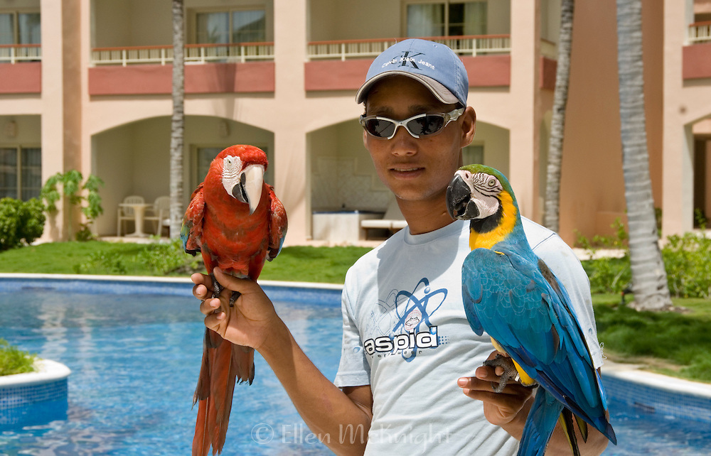 Man holding colorful macaws in Punta Cana
