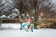 Susan and Louis K. Meisel Sculpture Garden in the Winter, Sagaponack, NY
