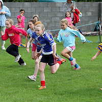 3/8/13 And there off. The Girls under 10's start their race at the Kilmaley Family Sports Day. Pic Tony Grehan