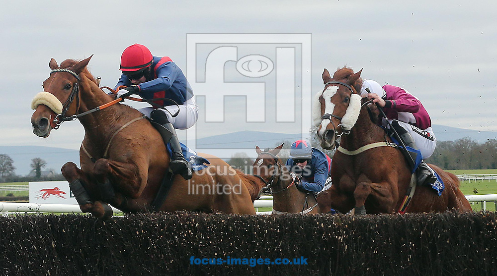 Picture by Lorraine O'Sullivan/Focus Images Ltd +353 872341234<br /> 01/12/2013<br /> Adrian Heskin pictured on She's got Grit wins from Danny Mullins on Fantastic Gold during the Irish Stalllion Farms EBF Mares Handicap Steeplechase at Fairyhouse Races at Fairyhouse Racecourse, Ratoath.