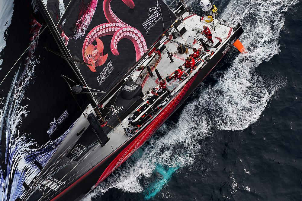 NEW ZEALAND, Tom Bowling Bay. 10th March 2012. Volvo Ocean Race Leg 4. PUMA Ocean Racing by BERG.