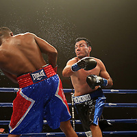 Yudel Johnson of Cuba (red shorts) fights Norberto Gonzalez from Mexico during the Iron Mike Productions, ESPN Friday Night Fights boxing match at Turning Stone Resort Casino on Friday, June 6, 2014 in Verona, New York.  (AP Photo/Alex Menendez)