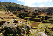 Madagascar, Rice fields