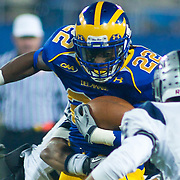Delaware RB (#22) Leon Jackson rush for 7 yards to the New Hampshire 13, 1ST DOWN DELAWARE. No. 5 Delaware defeats No.11 New Hampshire 16-3 on a brisk Friday night at Delaware stadium in Newark Delaware...Delaware will host the Division I FCS Championship Semifinals Round next weekend.