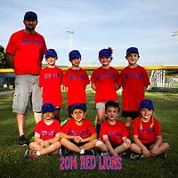 6-23-14 Red Lions Parent Pitch 2014