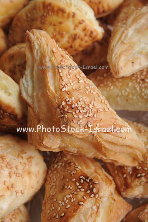 An assortment of Borek (Turkish pastries) (Also Burek or Boureka)