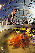 USA_SCI_BIOSPH_63_xs <br /> Biosphere 2 Project undertaken by Space Biosphere Ventures, a private ecological research firm funded by Edward P. Bass of Texas.  Biosphere candidate Bernd Zabel and fish culture inside Biosphere 2 test module before the construction of the main Biosphere buidings.  Biosphere 2 was a privately funded experiment, designed to investigate the way in which humans interact with a small self-sufficient ecological environment, and to look at possibilities for future planetary colonization. The $30 million Biosphere covers 2.5 acres near Tucson, Arizona, and was entirely self- contained. The eight 'Biospherian's' shared their air- and water-tight world with 3,800 species of plant and animal life. The project had problems with oxygen levels and food supply, and has been criticized over its scientific validity. 1986