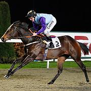 Mystical Sapphire and L P Keniry winning the 4.45 race