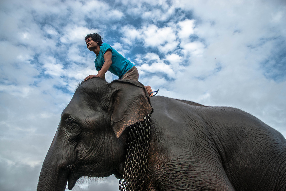 A mahout and his elephant, Pai, Thailand