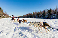 Musher Evan Hahn competing in the Fur Rendezvous World Sled Dog Championships at Campbell Airstrip in Anchorage in Southcentral Alaska. Winter. Afternoon.