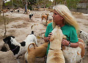 Terryl Just, founder of the Yangon Animal Shelter, Myanmar, is greeted by a group of rescued dogs.