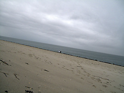 GERMANY SYLT LIST 3FEB13 - The beach at the Ellenbogen, Sylt, North Sea...jre/Photo by Jiri Rezac....© Jiri Rezac 2013