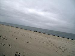 GERMANY SYLT LIST 3FEB13 - The beach at the Ellenbogen, Sylt, North Sea...jre/Photo by Jiri Rezac....© Jiri Rezac 2013