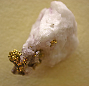 Native gold on a piece of Quartz. Found in the North Star mine, California.