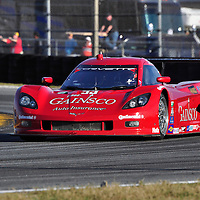 Team GAINSCO/Bob Stallings Racing competing at the Rolex 24 at Daytona 2012