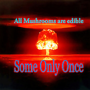 Famous humourous quotes series: Atomic mushroom explosion