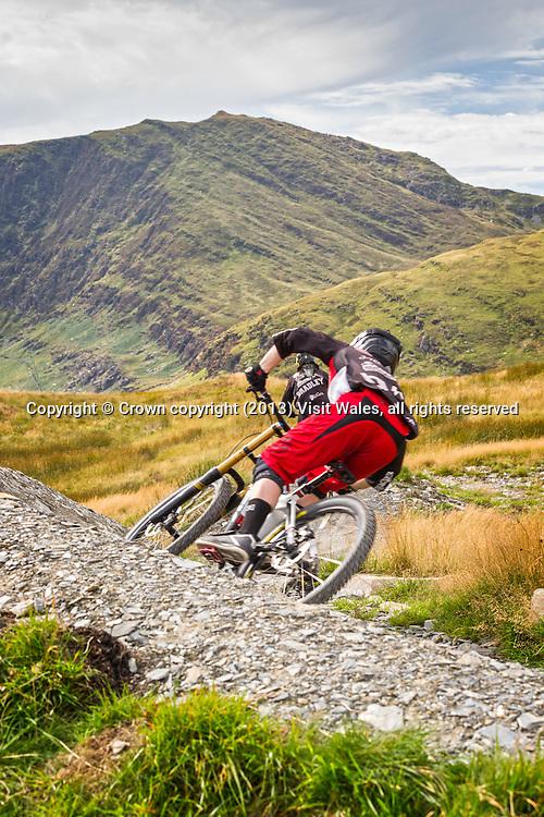 Biker on trail<br /> Antur Stiniog<br /> Blaenau Ffestiniog<br /> Snowdonia<br /> Gwynedd<br /> North<br /> Mountain Biking<br /> Activities and Sports