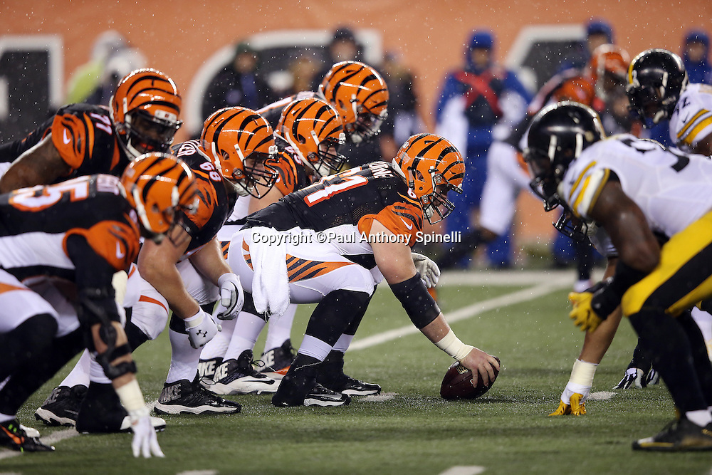 The Cincinnati Bengals offensive line gets set opposite the Pittsburgh Steelers defensive line during the NFL AFC Wild Card playoff football game against the Pittsburgh Steelers on Saturday, Jan. 9, 2016 in Cincinnati. The Steelers won the game 18-16. (©Paul Anthony Spinelli)