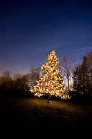 A brightly lit Christmas tree symboling the Christmas season sits on a hilltop in Simms Millenium Park in Courtenay.  Comox Valley, Vancouver Island, British COlumbia, Canada