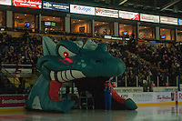 KELOWNA, CANADA - MARCH 7: Ogi stands on the ice on March 7, 2015 at Prospera Place in Kelowna, British Columbia, Canada.  (Photo by Marissa Baecker/Shoot the Breeze)  *** Local Caption *** Ogi
