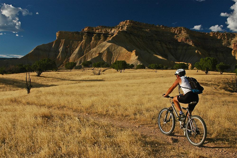 Mountain Biking Fruita Colorado