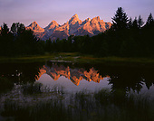 Summer - Grand Teton National Park