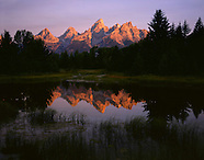Summer - Grand Teton National Park