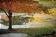 19098Campus Fall