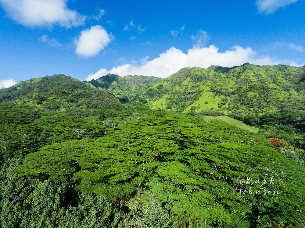 Aerial photograph of Mt. Makalea, Kauai, Hawaii