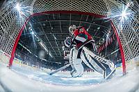 KELOWNA, CANADA - NOVEMBER 25: Roman Basran #30 of the Kelowna Rockets skates to the net against the Medicine Hat Tigers on November 25, 2017 at Prospera Place in Kelowna, British Columbia, Canada.  (Photo by Marissa Baecker/Shoot the Breeze)  *** Local Caption ***