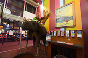 Downtown Vancouver, Granville Street. A life size moose.