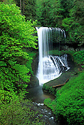 Image of North Middle Falls at Silver Falls State Park, Oregon, Pacific Northwest