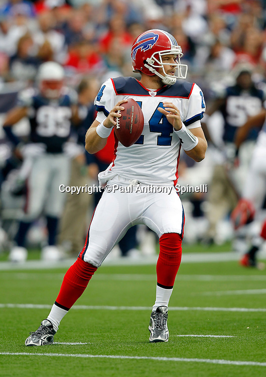 Buffalo Bills quarterback Ryan Fitzpatrick (14) drops back to throw a pass during the NFL regular season week 3 football game against the New England Patriots on September 26, 2010 in Foxborough, Massachusetts. The Patriots won the game 38-30. (©Paul Anthony Spinelli)