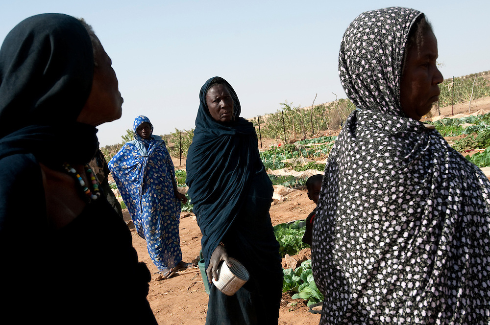 Women maintain a vegetable garden that they water with water dug in the beds of dry wadis and with well water in the province of Gorgol..Boitieck Ehel Aly, Mauritanie. 06/03/2011..Photo © J.B. Russell