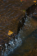 Januaria_MG, Brasil...A fazenda Agroecologica Soma, se intitula uma fazenda produtora de agua. Localiza no municipio de Januaria, a 250 km de Montes Claros, usa a tecnica de Barraginhas ou Bacias de Captacao de Agua de Chuva para recuperar os lencois freaticos e consequentemente os rios da regiao. Em 2005, foram construidas mais de 300 barraginhas na regiao, e acredita-se que o volume de agua dos lencois freaticos cresceu, inclusive com a recuperacao de um rio que corta a propriedade...Na foto, detalhe do Rio Capivara, um dos corregos que corta a fazenda e teve o volume de agua aumentada devido a tecnica aplicada...The Soma Agroecology farm, is called a farm producing water. Located in the city of Januaria, 250 km from Montes Claros, uses the technique  rainwater catchment to recover the ground water and consequently the rivers of the region. On 2005, they built 300 dam or rainwater catchment in the region, and it is believed that the volume of water of groundwater has grown, including the recovery of a river in the property...In this photo, detail of the water in the Capivara river, from a groundwater basin, a sign of the increased volume of water in the region...Foto: BRUNO MAGALHAES / NITRO